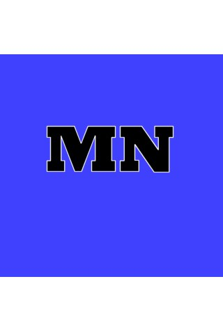 Minn Blue Blogs