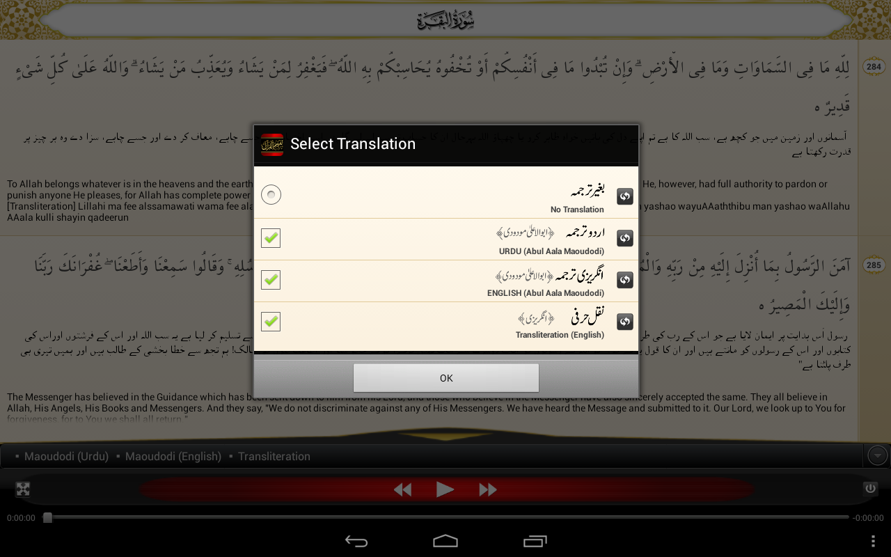 Tafheem-ul-Quran Screenshot 10