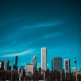 Chicago Skyline by Andrew J Knepper - City,  Street & Park  Skylines ( chicago skyline, urban, blue sky, urban landscapes, cityscape, chicago, city )