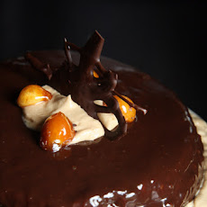 Macadamia Nut Gateau with Coffee-Praline Icing