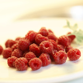 Raspberry by Iva Aviana - Food & Drink Fruits & Vegetables ( succulent, fruit, juicy, raspberry, mellow, close up, tasty, sweet, red, vitamins, fresh, food, outdoor, healthy, summer, vegetarian, garden )