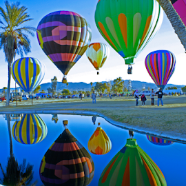 Reflections  by Tina Hailey - News & Events Entertainment ( water, freedom, reflections, lake havasu az, tinas capture moments, emotion, ponds, inspiring, free, festival, inspire, hot air balloons, inspirational, , air, transport )