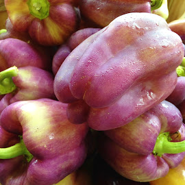 Purple Peppers by Christine Keaton - Food & Drink Fruits & Vegetables (  )