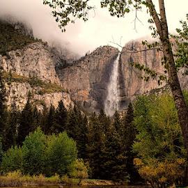 Yosemite Falls by Lowell Griffith - Landscapes Mountains & Hills ( mountain, yosemite, waterfall )