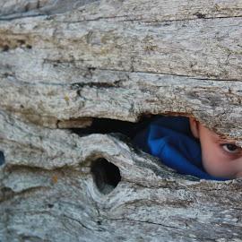 Eye See You by Ernie Kasper - People Body Parts ( looking, driftwood, watching, peeking, boy, log, hole, eye, weathered )