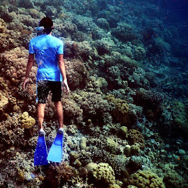 free dive at clear clean water by Abdul Aziz - Sports & Fitness Swimming ( wakatobi )