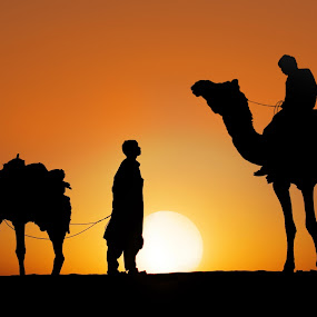 Chattering at sunset by Anna Tatti - People Street & Candids ( india thar desert people camelers chattering sunset,  )