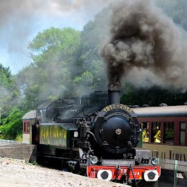 Old Smokey  by Brian Noel - Transportation Trains