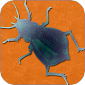 Pest Reference for Collections icon