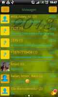 Screenshot of GO SMS Pro 2013 Theme