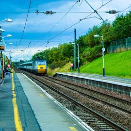 Train arriving at Musselburgh Train Station by Lyndsay Hepburn - Transportation Trains ( trainontracks, musselburghtrainstation, scottishtrainontracks, scottishrailtrain, trainarrivingatplatform )