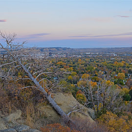 Billings, Montana by Angie Arnold - City,  Street & Park  Vistas (  )