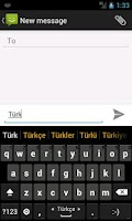 Screenshot of Turkish dictionary (Türkçe)