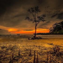 by NC Wong - Landscapes Sunsets & Sunrises