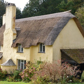 The Thatch.  by Teresa Chadwick - Buildings & Architecture Homes
