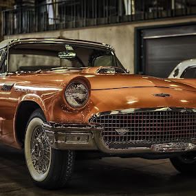 Classic Thunderbird by Ron Meyers - Transportation Automobiles ( 2014 tulsa auto show )