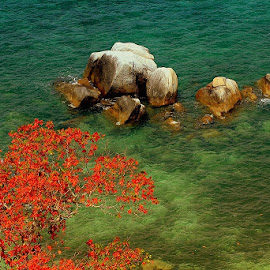 Pulau Lengkuas Belitung by Syafriadi S Yatim - Landscapes Beaches ( #indonesia #belitung #pantai #pasir_putih #batu_granit_raksasa #pasir_putih )