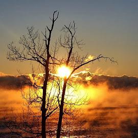Lake superior sunrise thanksgiving day by Sierra Parsons - Landscapes Sunsets & Sunrises ( golden hour, sunset, sunrise )