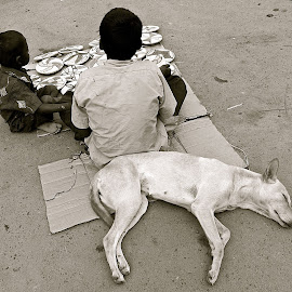 SLEEPING DOG ON THE STREET by Doug Hilson - City,  Street & Park  Street Scenes