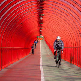 Arterial... cycling lane by Guido Todarello - City,  Street & Park  Street Scenes ( cicling lane, scotland, scozia, rosso, red, bicicletta, glasgow, pista ciclabile, bicycle )