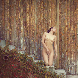 Mery by Dinko Dinev - Nudes & Boudoir Artistic Nude ( nude, autumn, woman, colors, passion, portrait )