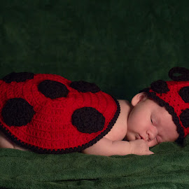 Sweet Dreams by Kristy Lester - Artistic Objects Clothing & Accessories ( creative, crochet, beautiful, precious, infant, ladybug, sleeping, baby, hat,  )