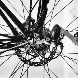 Bicycle shifter by Cory Bohnenkamp - Transportation Bicycles