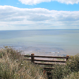 Orcombe Point View by Wendy Richards - Landscapes Beaches ( fence, orcombe view, sunny, devon, sea, sea view, exmouth )