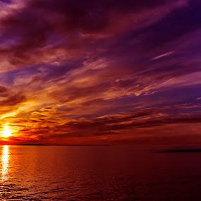 Purple Sunrise by Gabrielle Libby - Landscapes Sunsets & Sunrises ( water, orange, reflection, maine, purple, sea, ocean, yellow, morning, coast, dawn, blue, cloud )