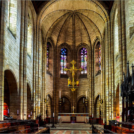 St George's Cathedral Cape Town by Robert Johnson - Buildings & Architecture Places of Worship ( altar, church, pews, architecture, worship )