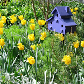 Bird's house by Maritza Féliz - Buildings & Architecture Other Exteriors ( bird house, flowers, garden )