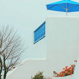 Blue Umbrella by Patricia Kousaleos - Buildings & Architecture Homes ( fence, tree, greece, umbrella, flowers, blue, orange. color )