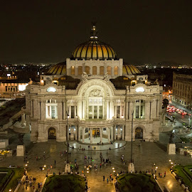 Bellas Artes by Miguel Angel Ruiz - Buildings & Architecture Public & Historical ( bellas artes, df, mexico, mikeruiz, night, alameda, nikon )