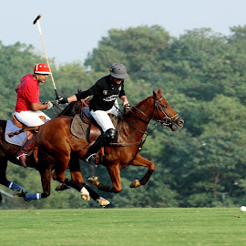 Polo in Pakistan by Imran Niazi - Sports & Fitness Other Sports ( pakistan, 2014, imran niazi photography, islamabad polo club, polo )