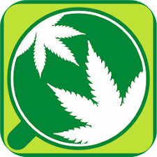 Cannabis World App
