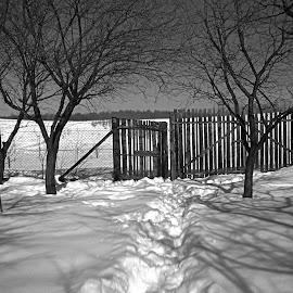 Winter day... by Bogdan  Shaddix - Novices Only Objects & Still Life ( fence, europe, winter, hdr, black and white, day,  )