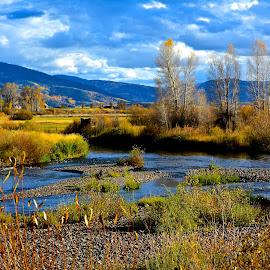 . by Jp Bergeron - Landscapes Prairies, Meadows & Fields ( nature, autumn, foliage, fall, river )