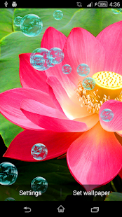 How to download Lotus Live Wallpaper patch 3.1 apk for android