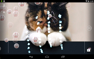Screenshot of Kitty Cat Live Wallpaper