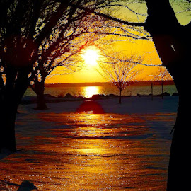 Winter sunset in Connecticut. by John Hayes - Landscapes Sunsets & Sunrises