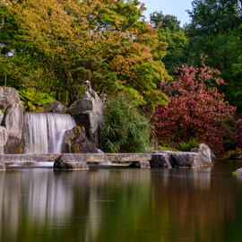 Waterfall in Japanese Garden by Siniša Ciglenečki - Nature Up Close Water ( reflection, smooth, beutiful, waterfall, blur, leaves, landscape, nature, autumn, sunny, long exposure, motion, water, wild, hasselt, green, colors, belgium, japanese, relaxing, red, cascade, fall, summer, peacefull, scenery, garden, daylight )
