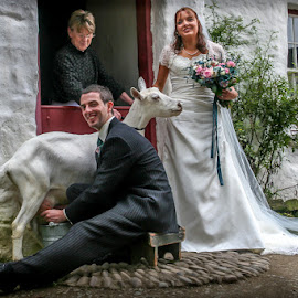 Geoffrey's Wedding by Terry Hanna - People Couples ( cobbles, half-door, ulster american folk park, goat, cottage, wedding, n ireland, co tyrone, whitewash, flowers, bride, groom )