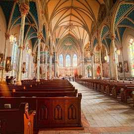 Cathedral of St. John the Baptist by Dub Scroggin - Buildings & Architecture Places of Worship ( savannah, interior, catholic, st. john the baptist, cathedral, Architecture, Ceilings, Ceiling, Buildings, Building )