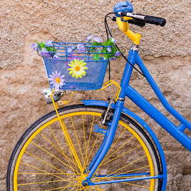 Flower bike by Cesare Morganti - Transportation Bicycles ( bicycles, bike, wheel, blue, yellow, flowers,  )