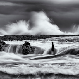 Power by Bradley Rasmussen - Landscapes Waterscapes ( water, black and white, waterscape, waves, ocean )