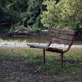 Benched by Scott Strausser - Novices Only Objects & Still Life ( water, nature, park bench, object, landscape )