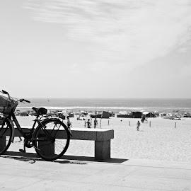 Descanso by Lia Ribeiro - Transportation Bicycles