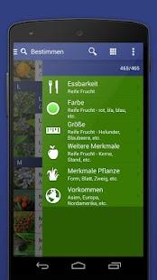free online mobile casino münzwert bestimmen