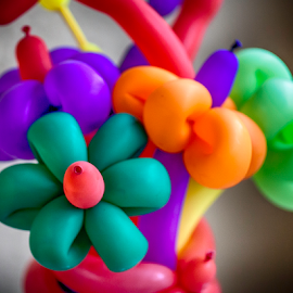 Balloon Bouquet by Nancy Merolle - Artistic Objects Other Objects ( bouquet, arrangement, playful, colorful, artistic, balloon )