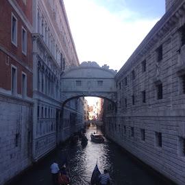 Venice by Sheryl Biesman - Travel Locations Landmarks ( gondola, venice, italy )